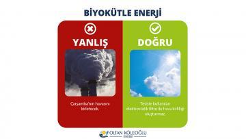 Biyokütle Enerji Ovayı Kirletmez