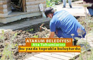 AtaTohum'da tohumlar yetişiyor!